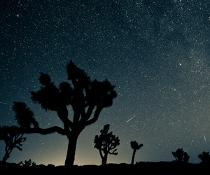 The Best Meteor Shower of the Year, the Perseids, Peaks Soon