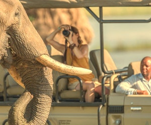Safaris Need to Become More Diverse—and Now Is the Time