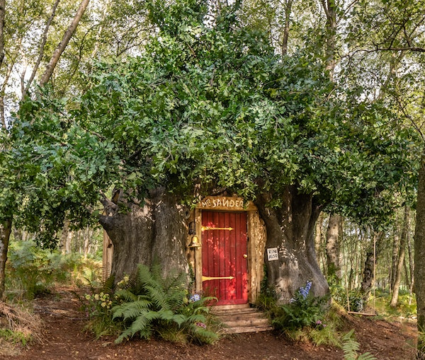 Airbnb Lists a House Fit for Winnie-the-Pooh in the Original Hundred Acre Wood