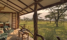 Foster a Love of Wildlife With These Family-Friendly Safaris