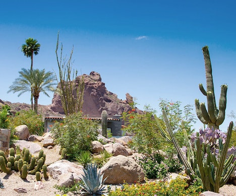 How to Find the Right Hotel for a Memorable Trip  Arizona