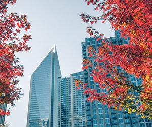 U.S. Cities to Visit This Fall