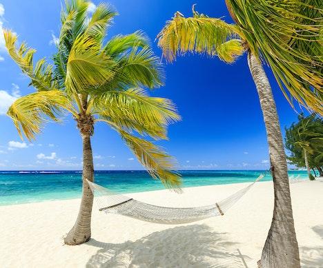 8 Reasons Why You Should Go to the Caribbean This Winter   Aruba