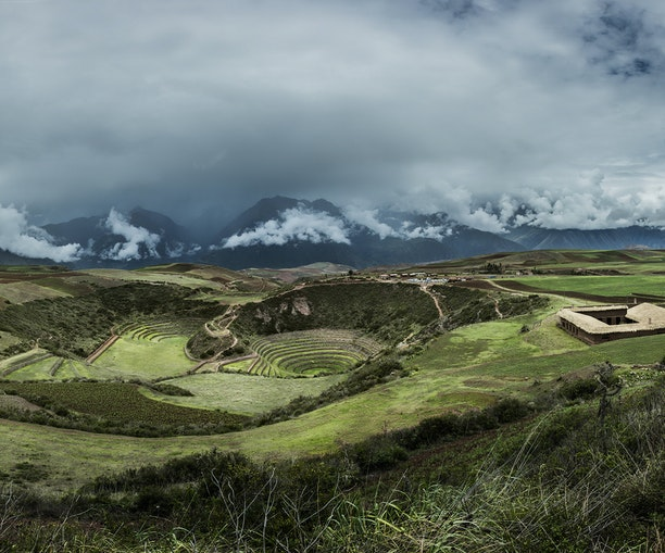 Preserving Peru's Ancient Culinary Legacy, One Forgotten Ingredient at a Time