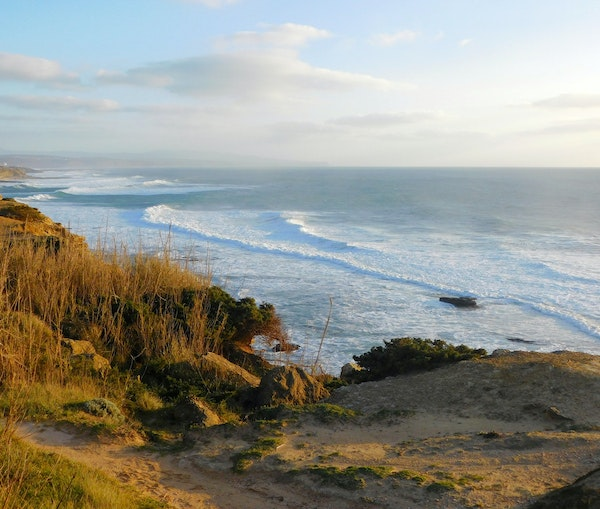 How the UNESCO of Surf Is Saving the Planet—One Beach at a Time
