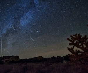 How to Watch the Orionids and Draconids Meteor Showers This October