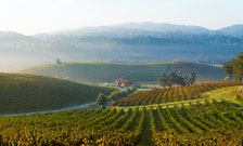 6 of the Best Wineries in Paso Robles, California