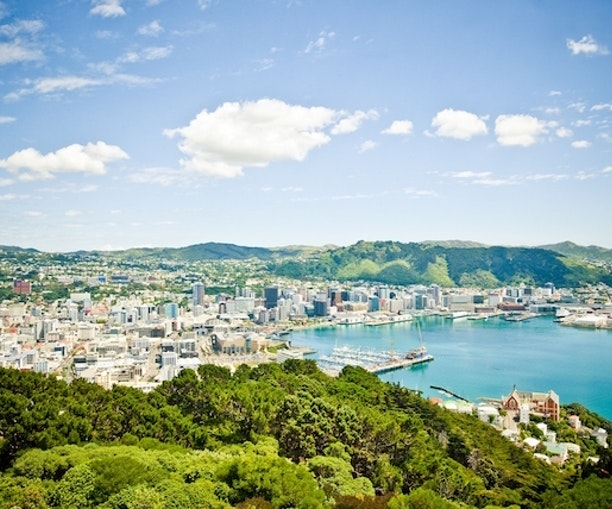 Work in Tech? New Zealand Will Pay to Help You Move