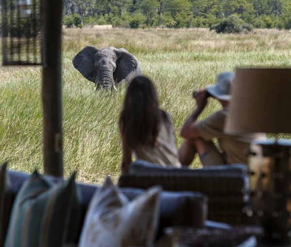 Lavish African Safaris That'll Give You Your Money's Worth (and More)