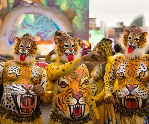 Rise of the Tigress: Why Now Is the Time to See India's 200-Year-Old Tiger Festival