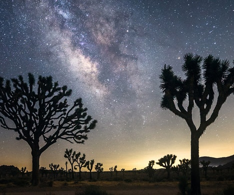 The Best Places to Go Stargazing This Winter   Israel