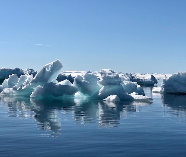 Just Back From Antarctica