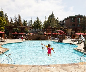 The Best Experiences for Families in California