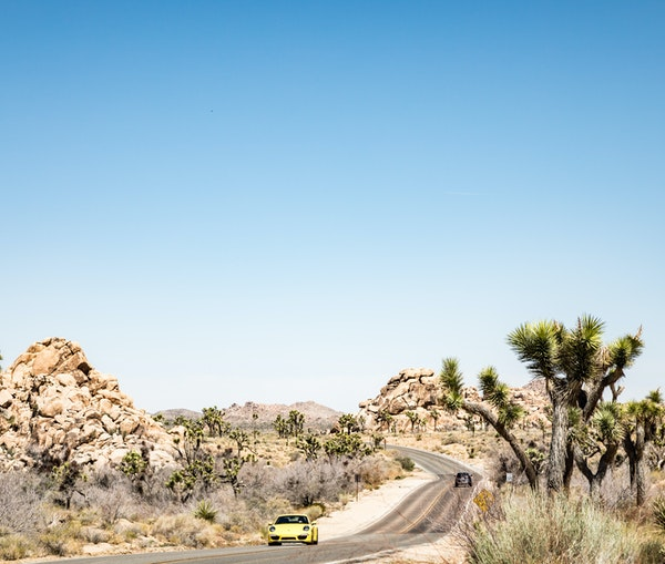 Where to Go Off the Beaten Path in Palm Springs and the Desert