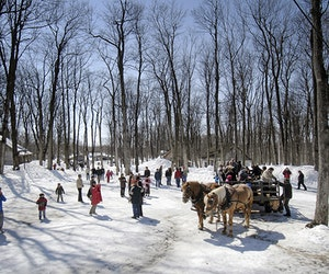The Perfect Early Spring Day Trip From Montreal Is All About Maple Syrup