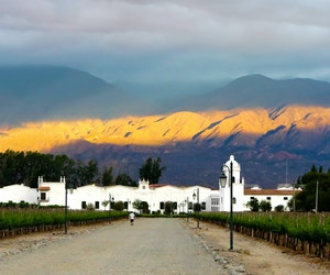 Move Over, Mendoza: Cafayate Is One of Argentina's Most Incredible Wine Towns