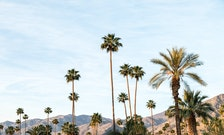 Exceptional Palm Springs & Desert