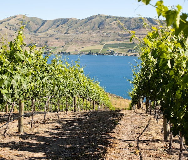 The Ultimate Wine Tour of Washington State