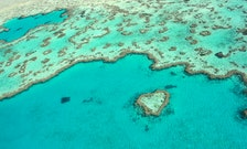The Great Barrier Reef's Great Big Complicated Story