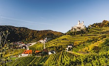 6 Austrian Wineries Worth Visiting Near the Danube River