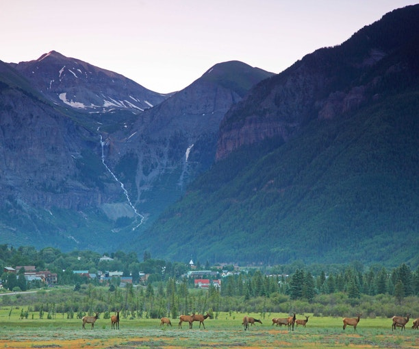 The Power of Telluride