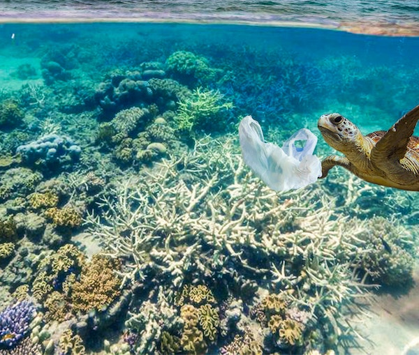 Save Oceans as You Shop: 10 Sustainable Products Made From Recycled Waste