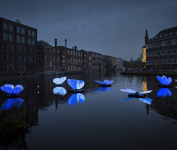 An Open-Air Festival Illuminates Amsterdam's Canals With Light Installations That Nod to Climate Change