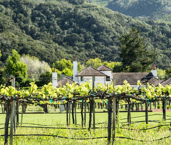 Monterey Is the Weekend Getaway for Anyone Serious About Farm-to-Table Food and Really Good Wine