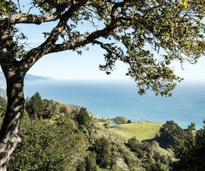 Four Hidden Gems in California's Iconic Central Coast