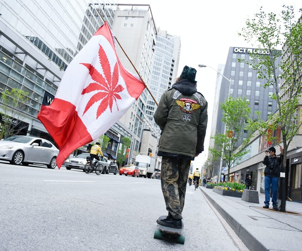 How to Buy Legal Weed in Canada