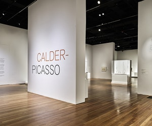 "Major ""Calder-Picasso"" Exhibit Comes to the United States"