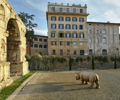 Why You Should Go to Rome This Winter   Italy