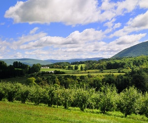 Why You Should Spend Your Summer Weekends in the Berkshires