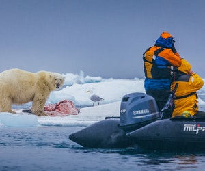 Discover Palatial Glaciers and Exotic Wildlife in Spitsbergen