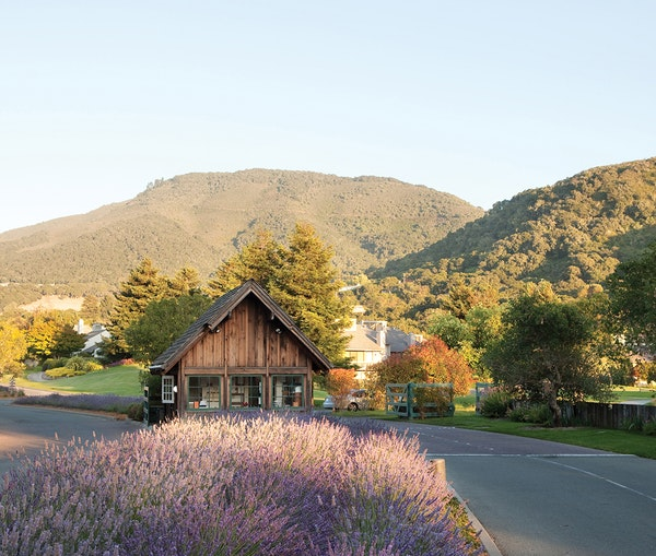 The Sweetest Wine Towns in the United States