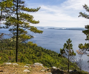 On Moosehead Lake, Finding Calm in the Chaos