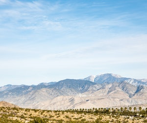 The Best Private Tours of Palm Springs and the Desert
