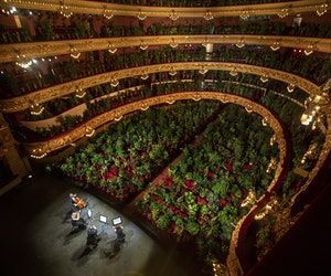 Barcelona Opera Reopens With Performance for Nearly 3,000 Plants