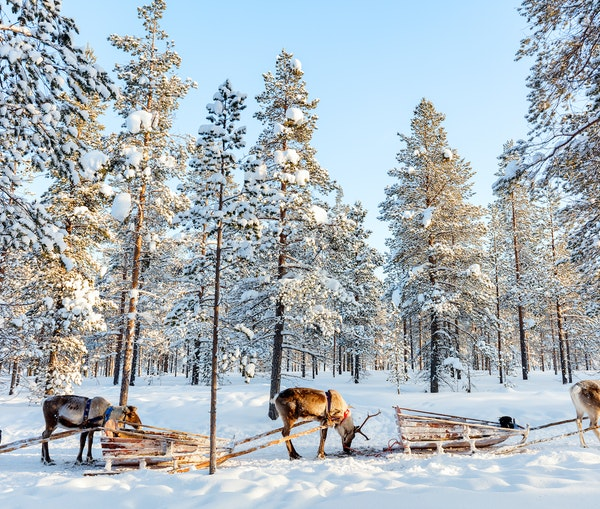 Fly the Kids to Scandinavia Practically Free With This New Deal