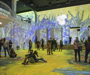 Immersive Van Gogh Digital Art Shows Coming to 13 U.S. Cities