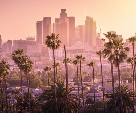 Why You Should Go to Los Angeles This Winter Los Angeles