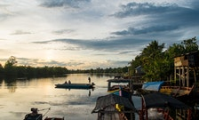 A Look at the Radical Conservation of Cambodia's Mysterious Rain Forest