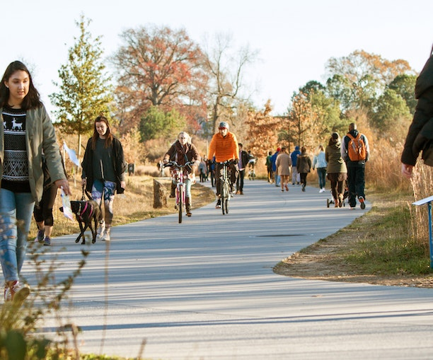 A Beginner's Guide to the Great American Rail Trail