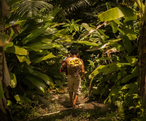 Why Traveling to Peru for Ayahuasca Is Not All it's Cracked Up to Be