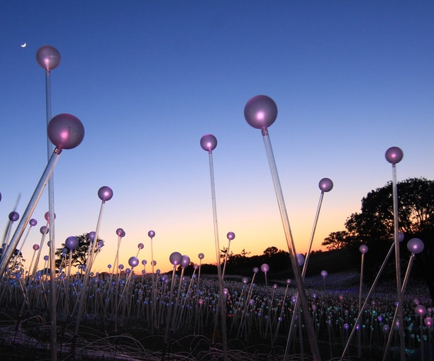"""An """"Electric Bloom"""" of Light Installations Just Opened at This Botanical Garden"""
