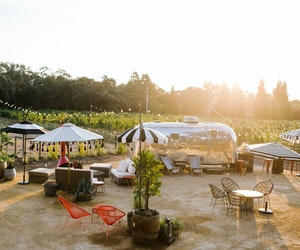 Napa's in Bloom: How to Plan the Perfect Spring Weekend