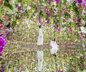 Tokyo's New Floating Flower Garden Wants You to Become One With the Orchids
