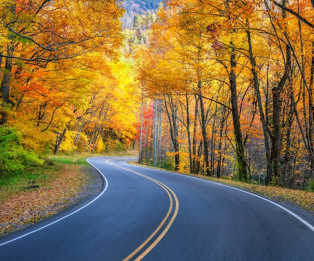 Plan Your Socially Distanced Fall Getaway With This Peak Foliage Prediction Map