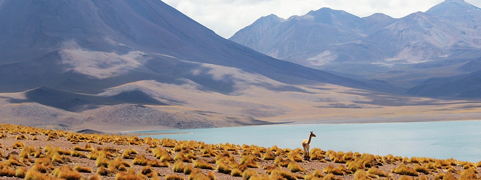 Chile Travel Guide Afar