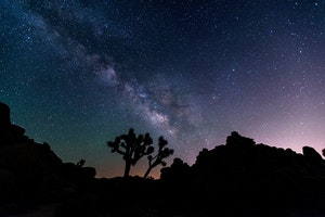 Joshua Tree National Park Deserves Its Recent Recognition